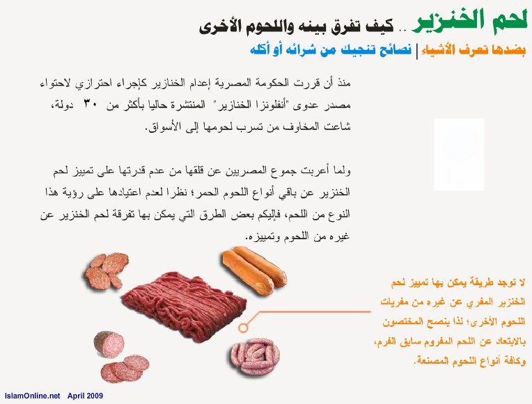 الخنزير maas-d9aa48e72e.jpg